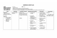 005 Nursing Care Plan Template Unbelievable Ideas Pdf Free within Nursing Care Plan Template Word