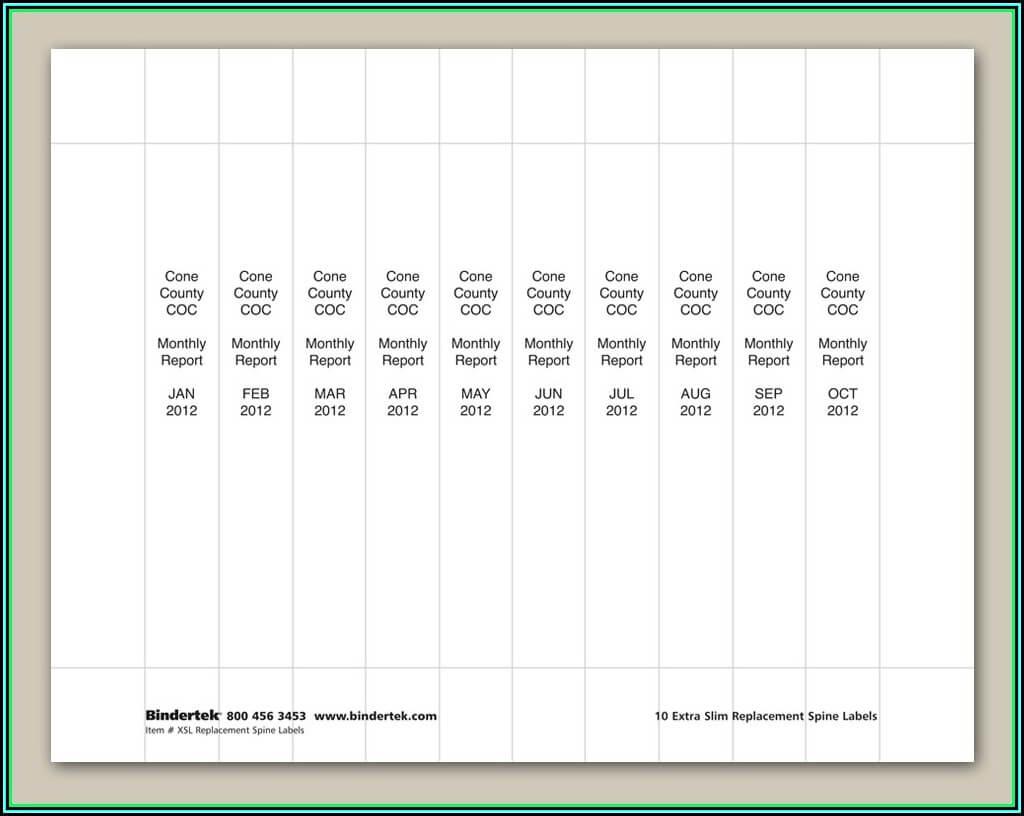 006 Avery Binder Templates Spine Inch Template Singular 1 For Binder Spine Template Word