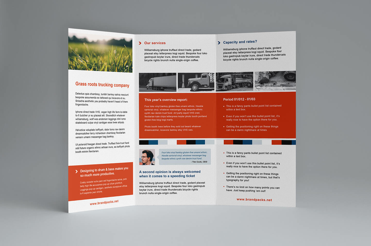 023 Free Trifold Brochure Template For Illustrator Tri Fold In Tri Fold Brochure Template Illustrator Free