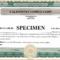 025 Free Stock Certificate Template Microsoft Word For With Free Stock Certificate Template Download