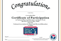 032 Template Ideas Sports Certificate Of Appreciation Regarding Certification Of Participation Free Template