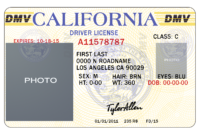 25 Images Of California Id Card Template Photoshop inside Texas Id Card Template