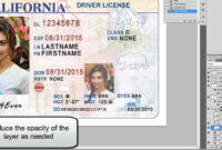 26 Images Of Georgia Identification Card Template for Georgia Id Card Template
