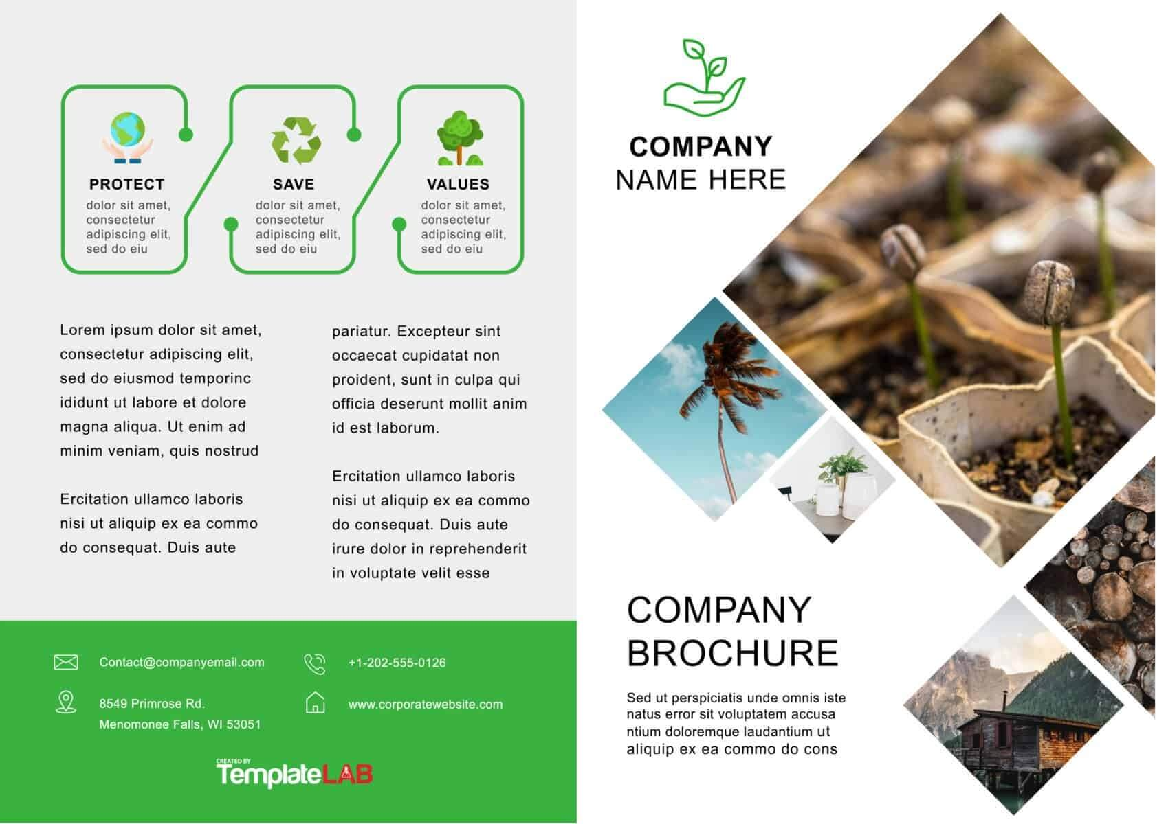33 Free Brochure Templates (Word + Pdf) ᐅ Template Lab Pertaining To Word 2013 Brochure Template