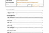 40+ Project Status Report Templates [Word, Excel, Ppt] ᐅ in Funding Report Template