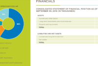 7 Tips For Creating An Effective Nonprofit Annual Report with Non Profit Annual Report Template