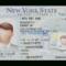 9Ddda Download New York State Drivers License Template Psd Within Blank Drivers License Template