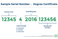 A User's Guide: China's New Non-Standardized Degree Certificate with Masters Degree Certificate Template