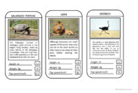 Animal Top Trumps Game – English Esl Powerpoints for Top Trump Card Template