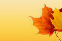Autumn Ppt Background – Powerpoint Backgrounds For Free intended for Free Fall Powerpoint Templates
