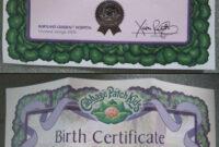 Cabbage Patch Kids Adoption Certificate | Birth Certificate in Baby Doll Birth Certificate Template