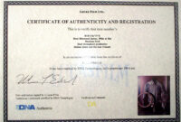 Certificate Of Authenticity Photography Template Lovely pertaining to Photography Certificate Of Authenticity Template