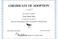 Child Adoption Certificate Template | Sample Resume For with regard to Adoption Certificate Template