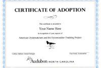 Child Adoption Certificate Template | Sample Resume For with regard to Adoption Certificate Template