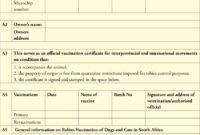 Dentity, Rabies Vaccination And Movement Certificate For inside Dog Vaccination Certificate Template
