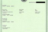 Fake Birth Certificate   Obama Birth Certificate, Birth inside Fake Birth Certificate Template