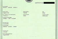 Fake Birth Certificate | Obama Birth Certificate, Birth intended for Birth Certificate Fake Template