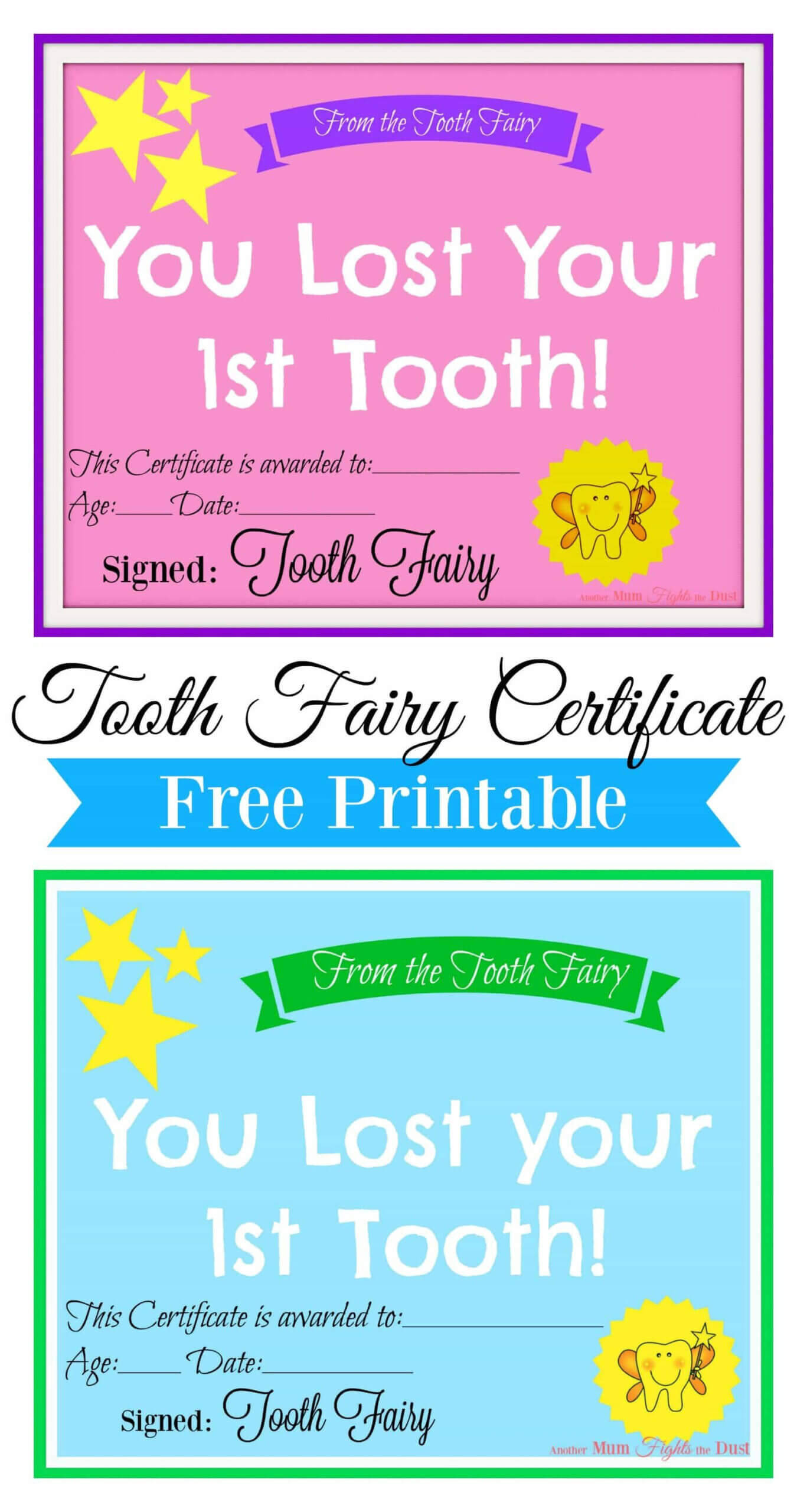 Free Printable Tooth Fairy Certificate | Tooth Fairy Pertaining To Free Tooth Fairy Certificate Template