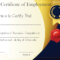 Free Sample Certificate Of Employment Template | Certificate Regarding Best Performance Certificate Template