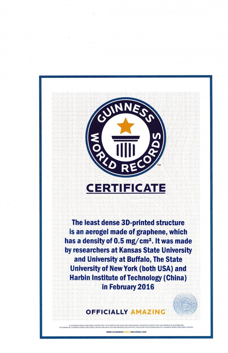 Guinness World Record Certificate Template - Zimer.bwong.co Intended For Guinness World Record Certificate Template