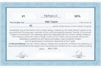 Llc Member Certificate Template – Ironi.celikdemirsan Regarding New Member Certificate Template
