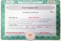 Llc Member Certificate Template – Ironi.celikdemirsan throughout Llc Membership Certificate Template