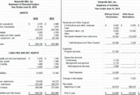 Non Profit Financial Statement Template 15 Premium intended for Credit Analysis Report Template