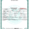 Novelty Birth Certificate Template | Fake Birth Certificate throughout Novelty Birth Certificate Template