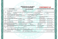 Novelty Birth Certificate Template | Fake Birth Certificate with regard to Fake Birth Certificate Template