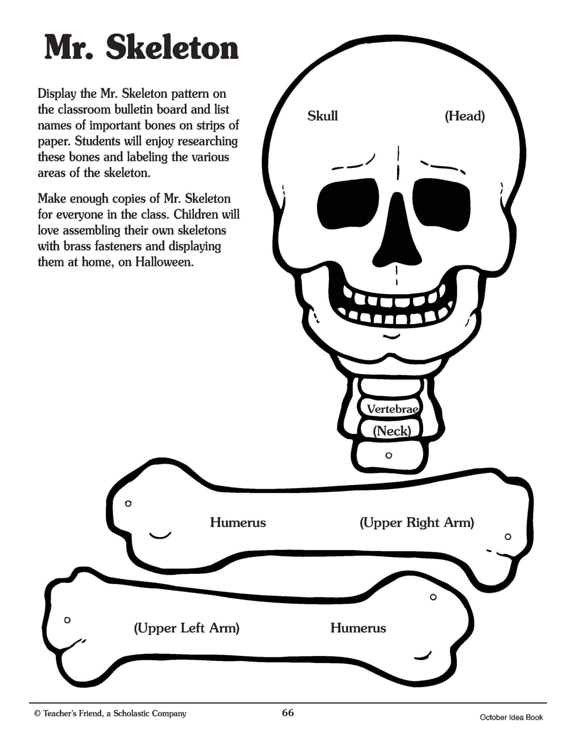 Pin On For The Classroom With Skeleton Book Report Template