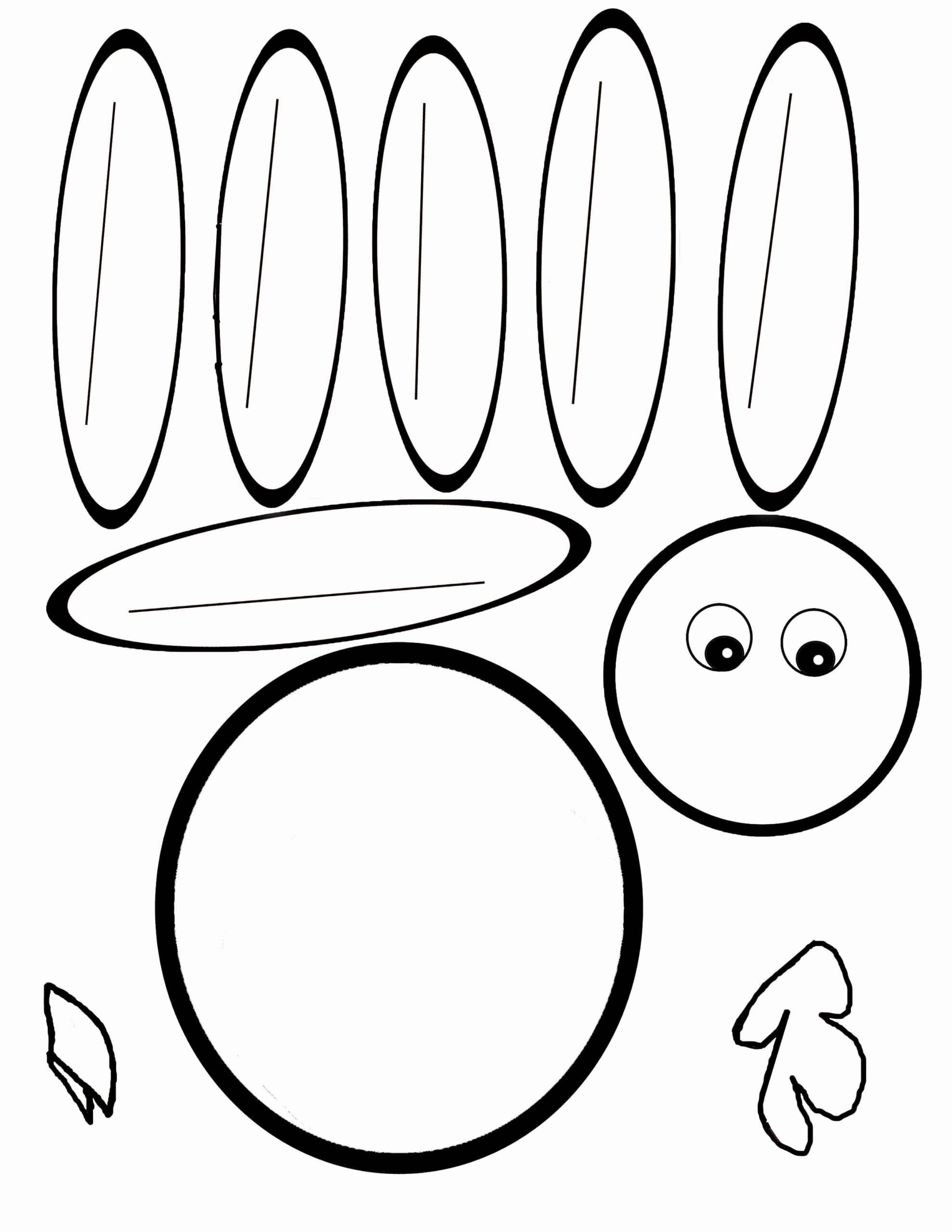 Pin On Pediatric Ot For Blank Turkey Template