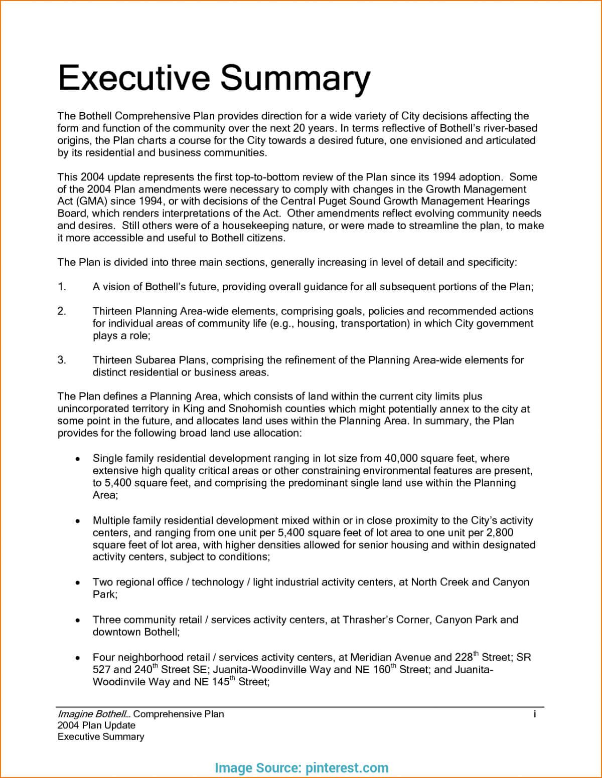 Pintanveer Hasan Sumon On Executive Summary   Executive Regarding Template For Summary Report