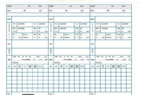 Theclevergypsy Nicu Assignment/report Sheet Aka Shift Brain with Charge Nurse Report Sheet Template
