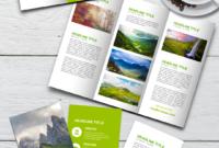 Tri Fold Travel Brochure Google Slides Us Letter Paper Size for Google Docs Travel Brochure Template