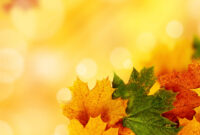Yellow Autumn Backgrounds For Powerpoint – Nature Ppt Templates with regard to Free Fall Powerpoint Templates